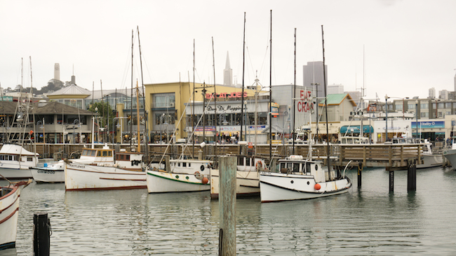 The fishing fleet waits at the doc for another day on Fisherman's Wharf.